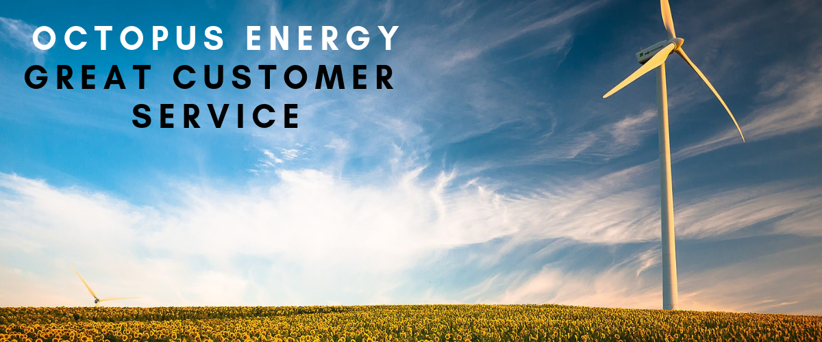 A review of Octopus Energy by a customer