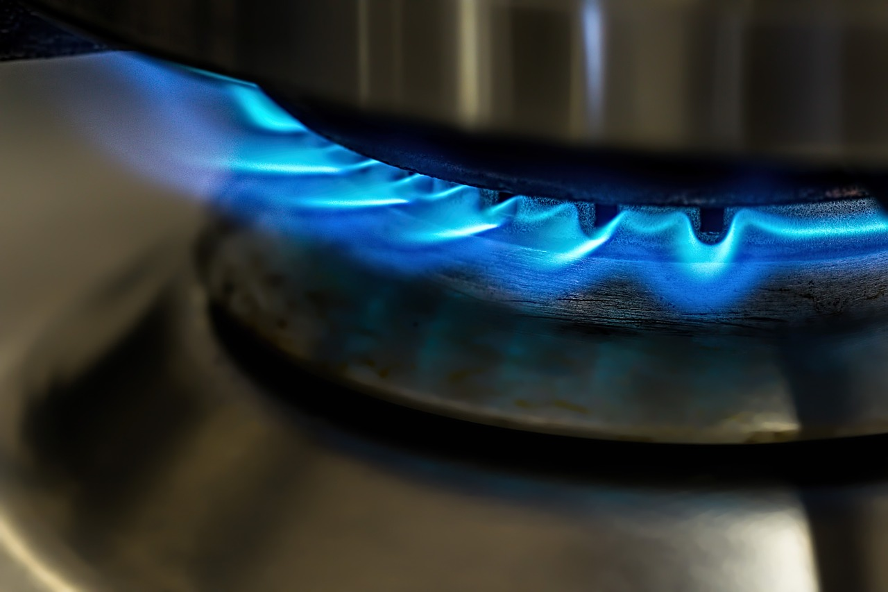 biogas at home
