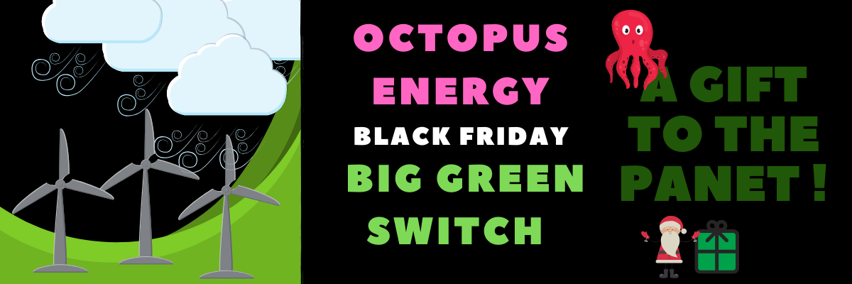octopus energy competition