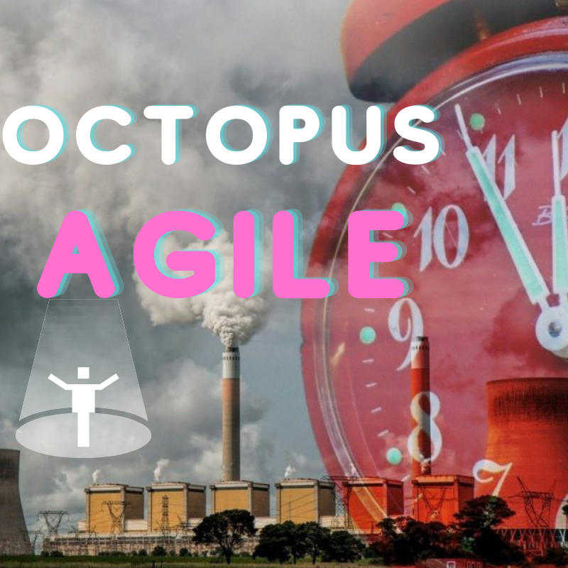 octopus agile review